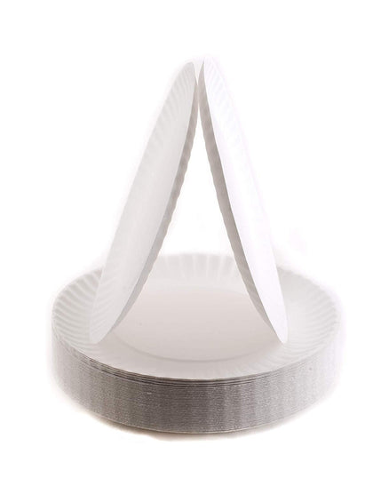 White Disposable Paper Plates