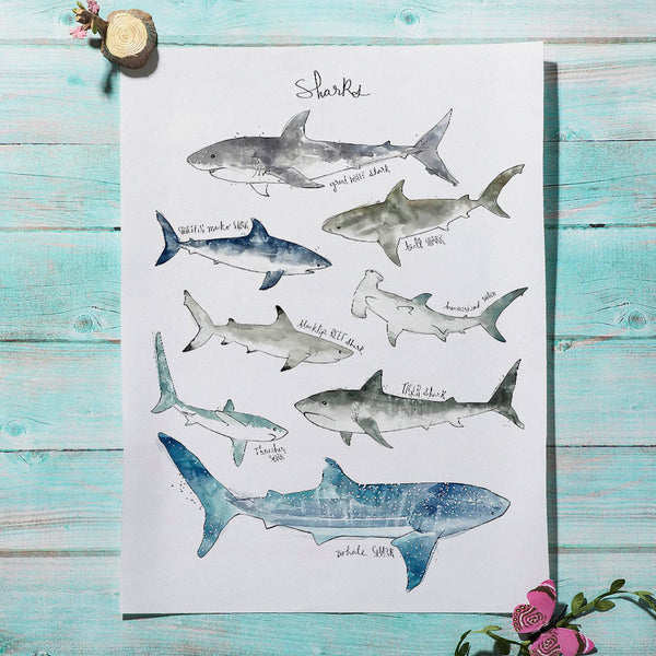 Watercolor Sharks Canvas Painting - Just Kidding Store