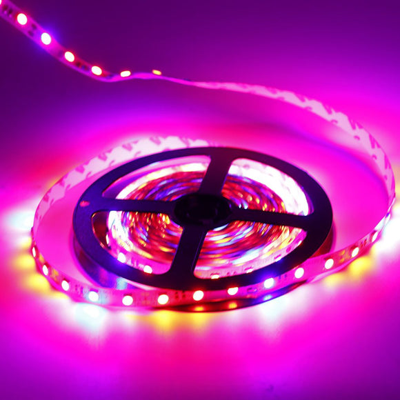 12V 70W 300LED 5m 5050 Plants Grow Flexible LED Strip Tape Aquarium Greenhouse Hydroponic Plant Growing Lamp Non/ Waterproof
