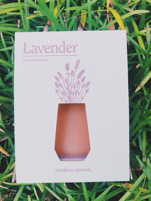 Lavender- Hydro Grow Kit