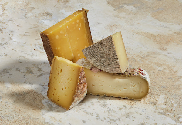The 5 Cheese Types and How to Store Them