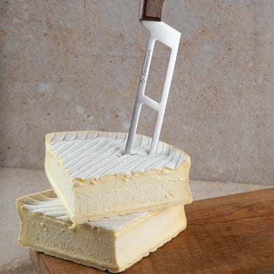 Profesional Soft Cheese Knife
