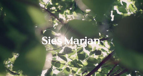 Sies Marjan FW17 Campaign by Bruce Weber