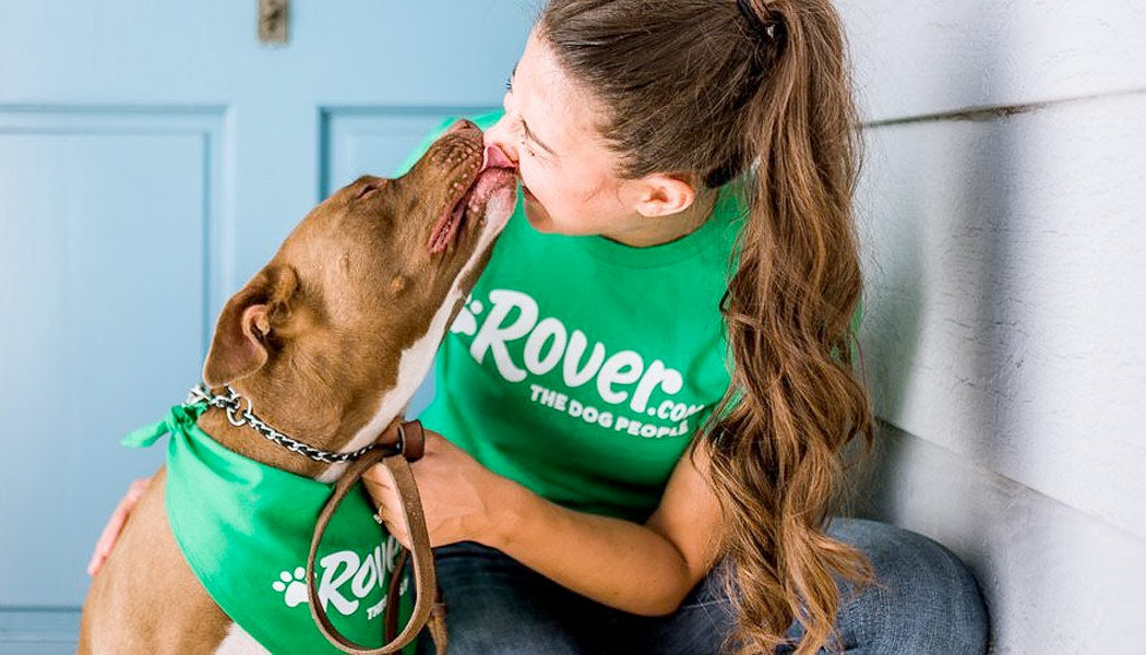 Rover dog with owner