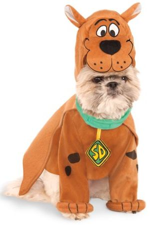 A dog dressed as Scooby-Doo for Halloween