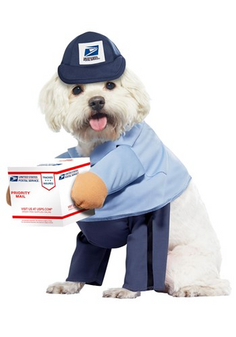 A dog dressed as a mailman for Halloween