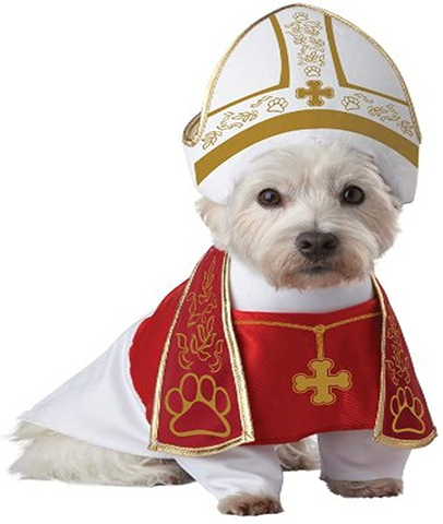 A dog wearing a Pope costume