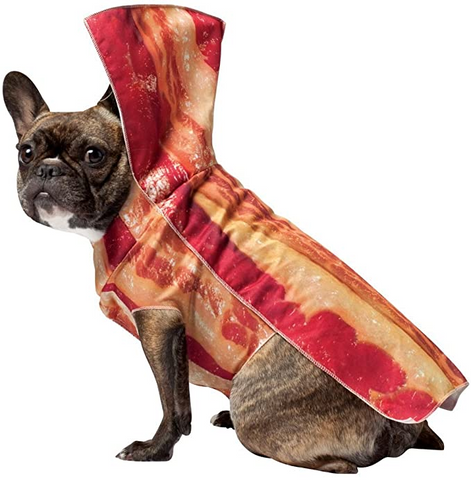 A dog wearing a bacon costume