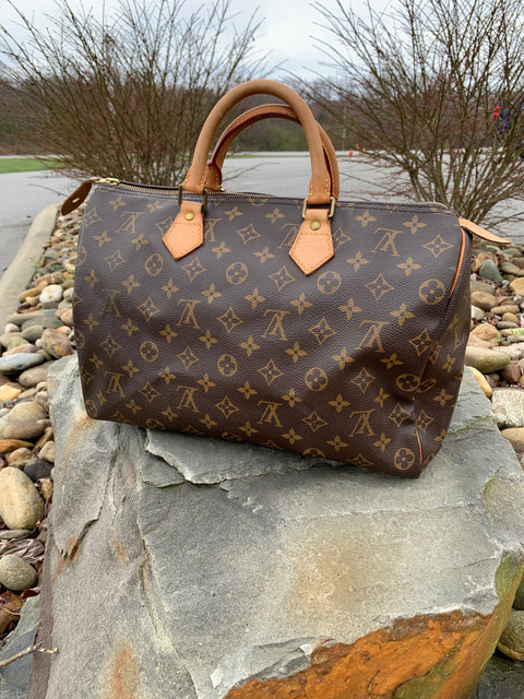 Louis Vuitton Speedy Handbag