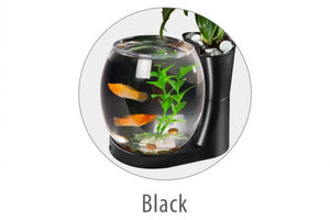 NATURAL WORLD AQUARIUM SIGLE TANK (Black) - Epetshopcy
