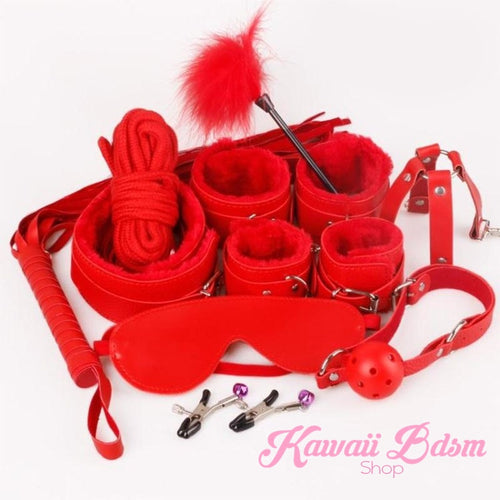 Bdsm kit Set 10 pcs gag hand cuffs collar leash ankle cuffs whip paddle nipple clamps  feather rope shibari bondage cute red fetish aesthetic ddlg cglg mdlg ddlb mdlb little submissive restraints sex couple by Kawaii BDSM - cute and kinky / Worldwide Free Shipping