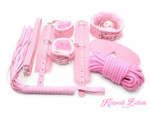 BBdsm kit Set 10 pcs pet bone gag hand cuffs collar leash ankle cuffs whip paddle nipple clamps  feather rope shibari bondage cute pink aesthetic ddlg cglg mdlg ddlb mdlb little submissive restraints sex couple by Kawaii BDSM - cute and kinky / Worldwide Free Shipping
