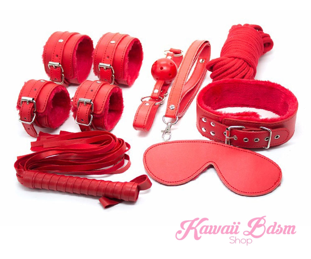 Bdsm kit Set 10 pcs pet bone gag hand cuffs collar leash ankle cuffs whip paddle nipple clamps  feather rope shibari bondage cute red aesthetic ddlg cglg mdlg ddlb mdlb little submissive restraints sex couple by Kawaii BDSM - cute and kinky / Worldwide Free Shipping