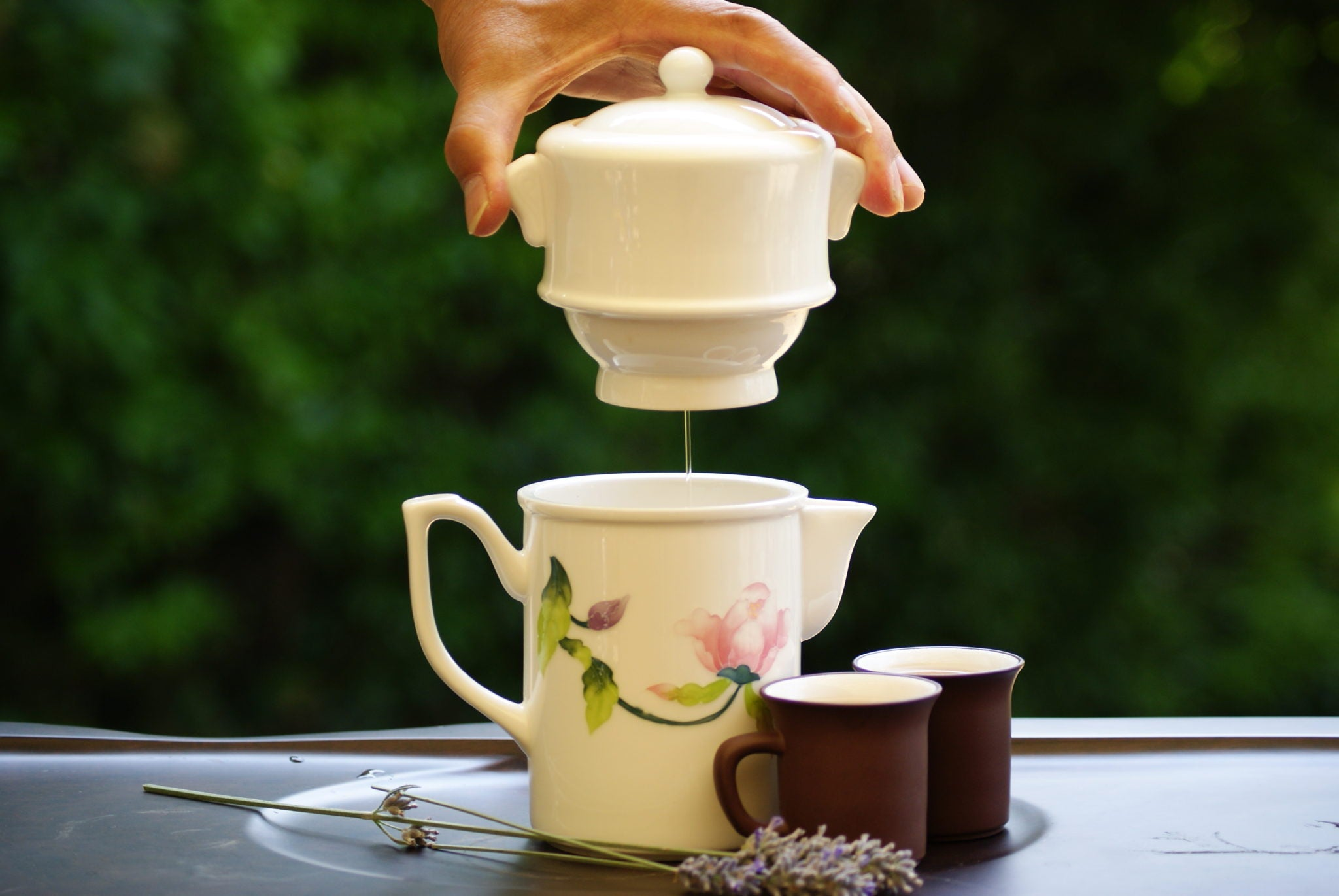 Signature Auto Tea Brewer