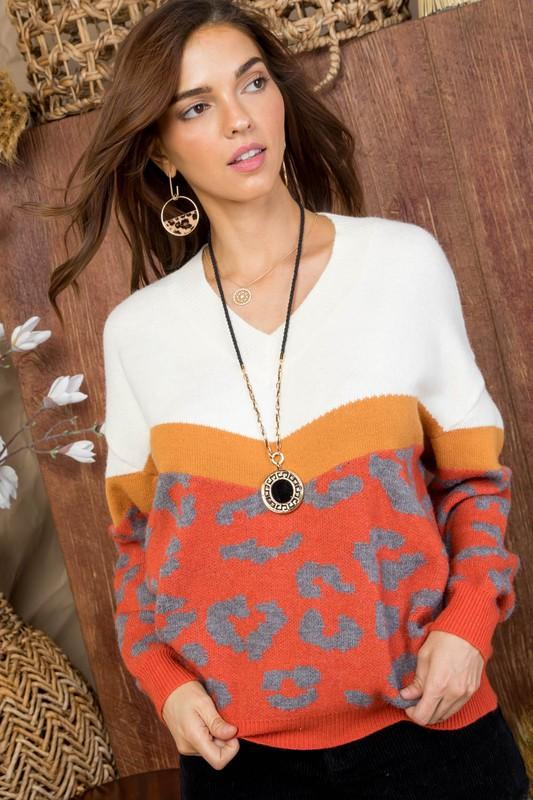 Spice Up Your Life Cheetah V- Neck Sweater - Caroline Hill