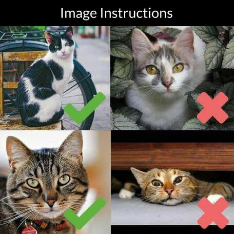 image instructions for the cat necklace