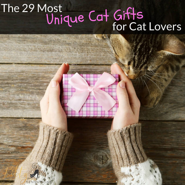 the 29 most unique cat gifts for cat lovers kittysensations