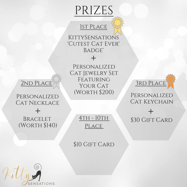 Cat Contest Prizes