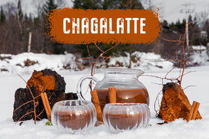 The Perfect Winter Wellness Drink - ChagaLatte