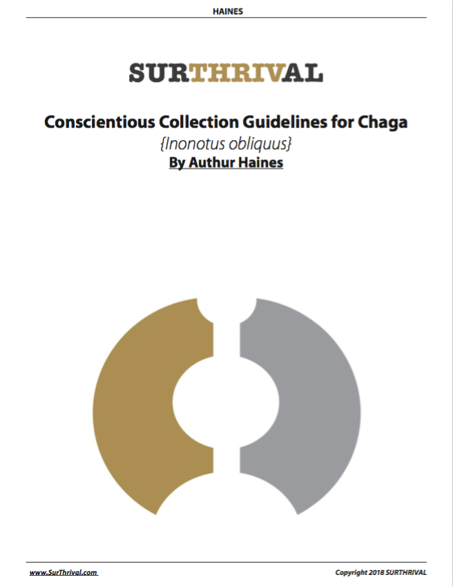 Guidelines for Conscientious Chaga Collection