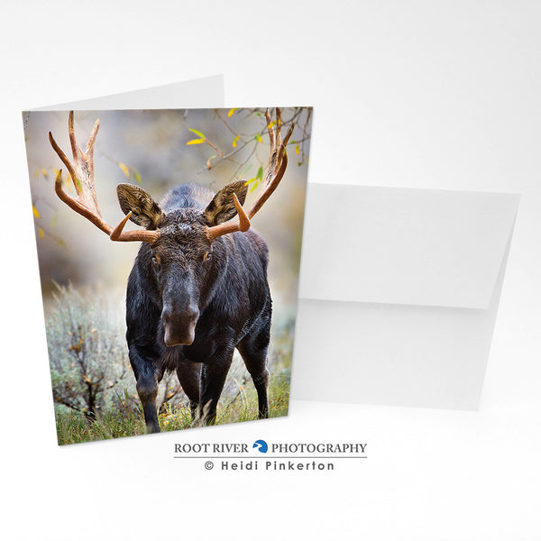 Moose - Adrenaline Rush Greeting Card