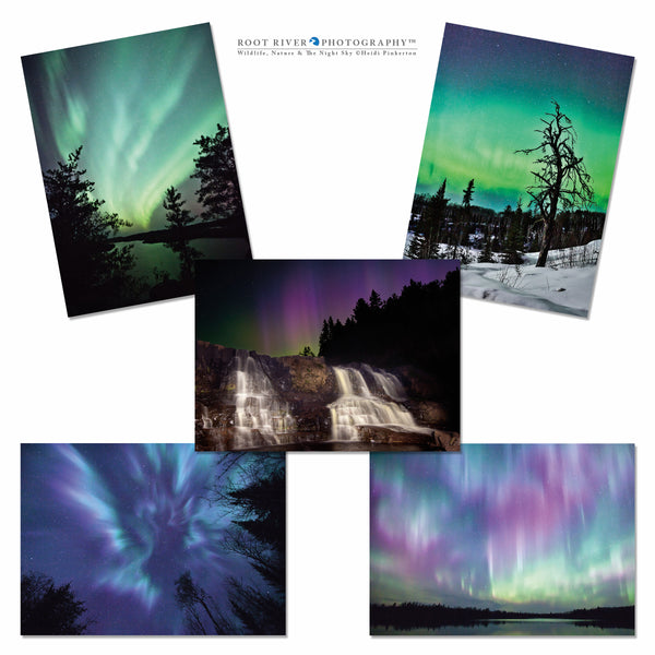 Night Sky - Variety Northern Lights Collection 001 Greeting Cards