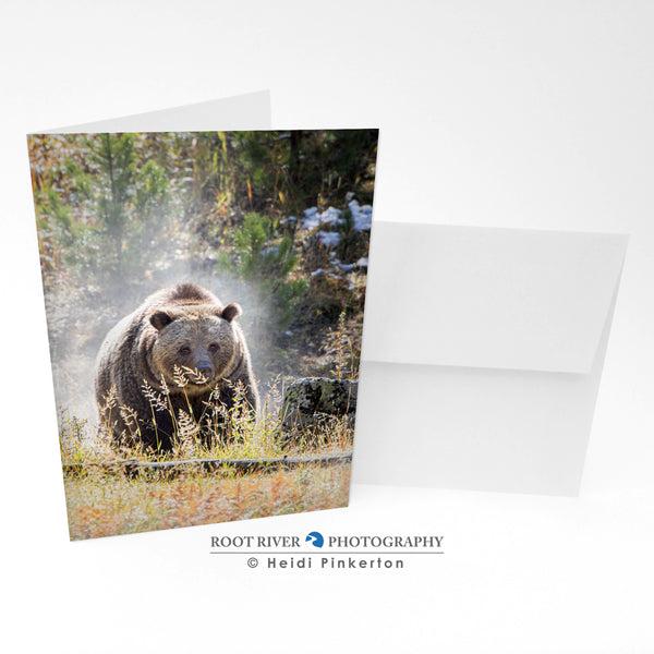 Bears - Autumn Mist Greeting Card