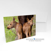 Moose - Bookends Greeting Card