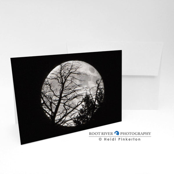 Night Sky - Full Moon Silhouette Greeting Card