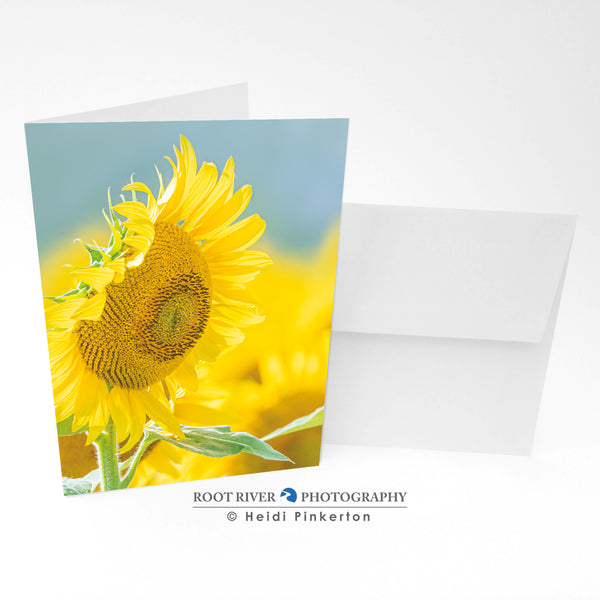 Sunflowers - Happy Sunshiny Day Greeting Card