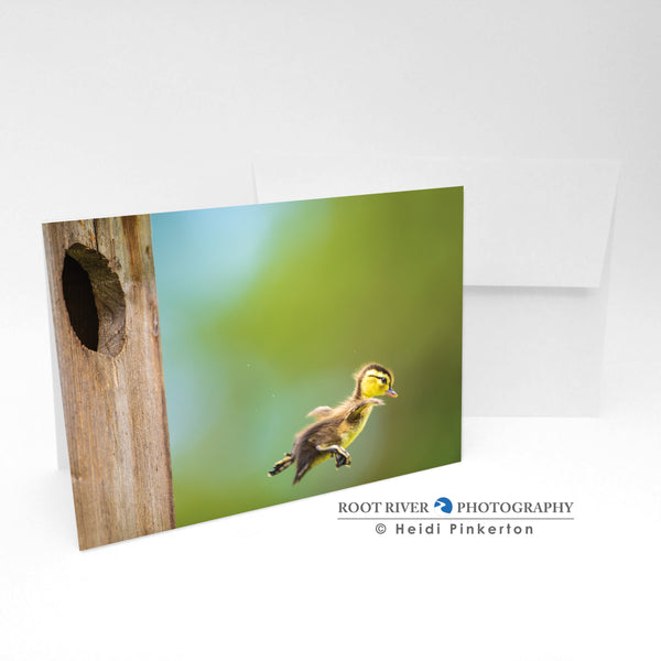 Birds - Jump Day Greeting Card