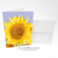 Sunflowers - Merry and Bright Greeting Card