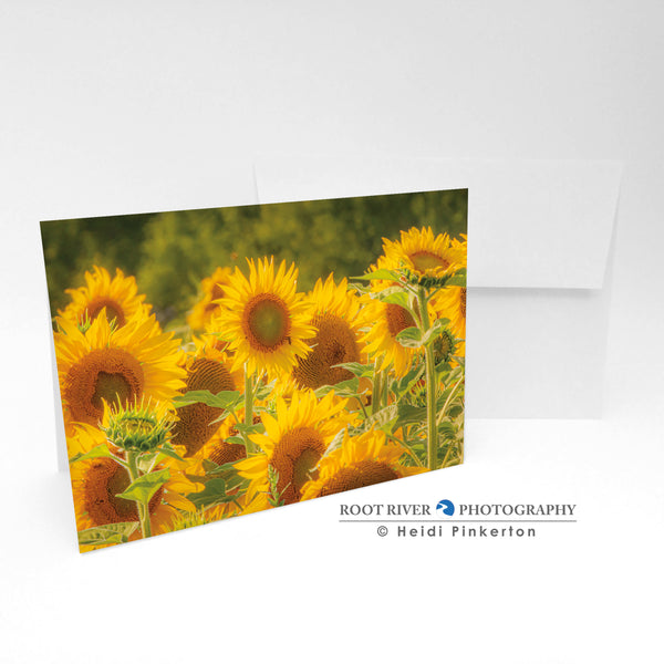 Sunflowers - Nature's Choir Greeting Card