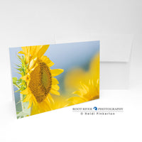 Sunflowers - Sun Seeker Greeting Card