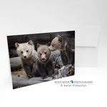 Bears - Want to Know a Secret Greeting Card