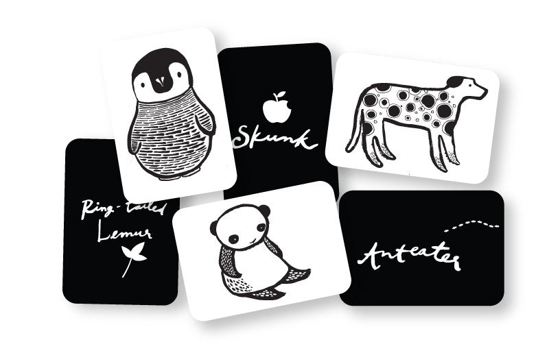 Wee Gallery Art Cards - Black & White Collection