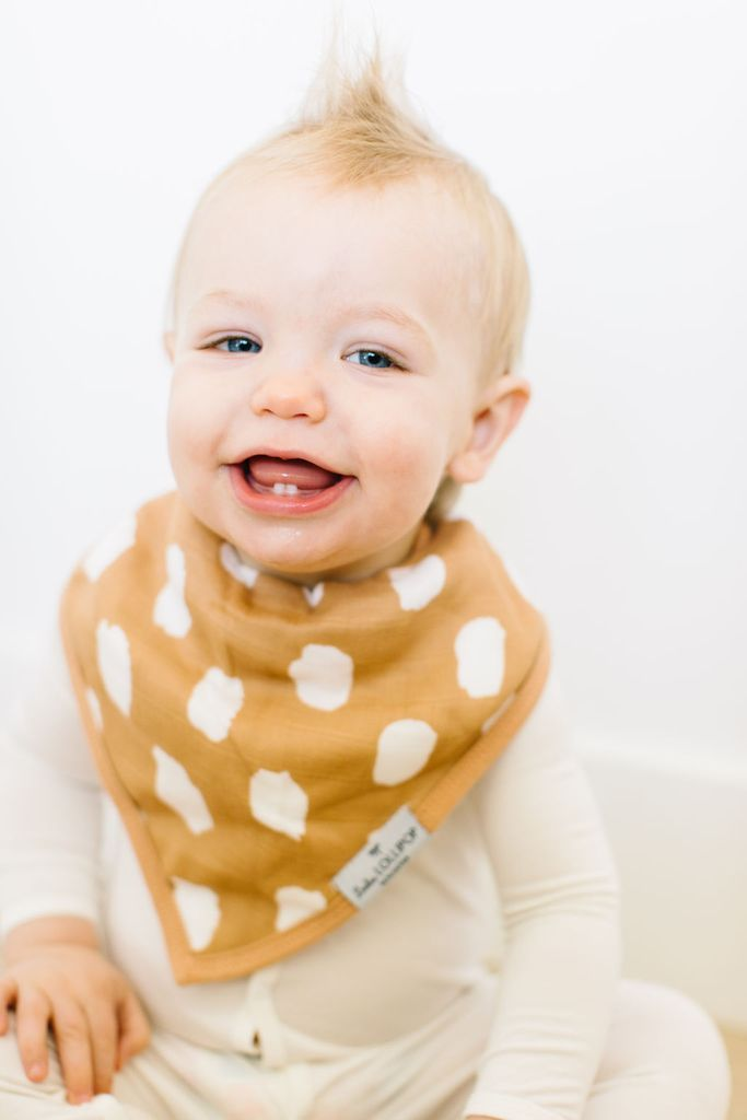 Loulou Lollipop Bandana Bib Set - Safari Jungle