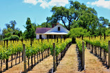 Sonoma Vinyards, Durell Vineyards