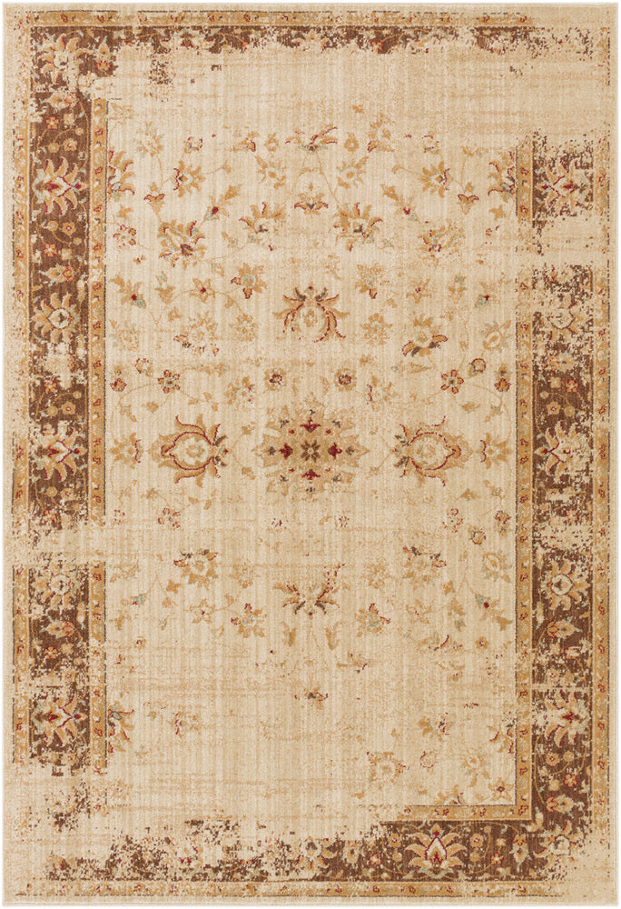 Surya Arabesque ABS3033 Brown/Red Classic Area Rug