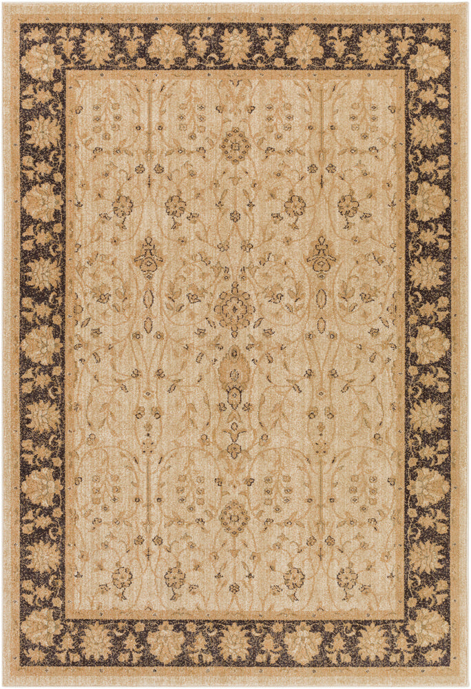 Surya Arabesque ABS3038 Brown/Black Classic Area Rug