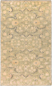 Surya Ainsley AIN1013 Green/Brown Classic Area Rug