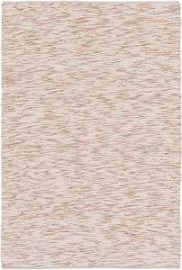 Surya Azizi AZZ3001 Brown/Neutral Flatweave Area Rug