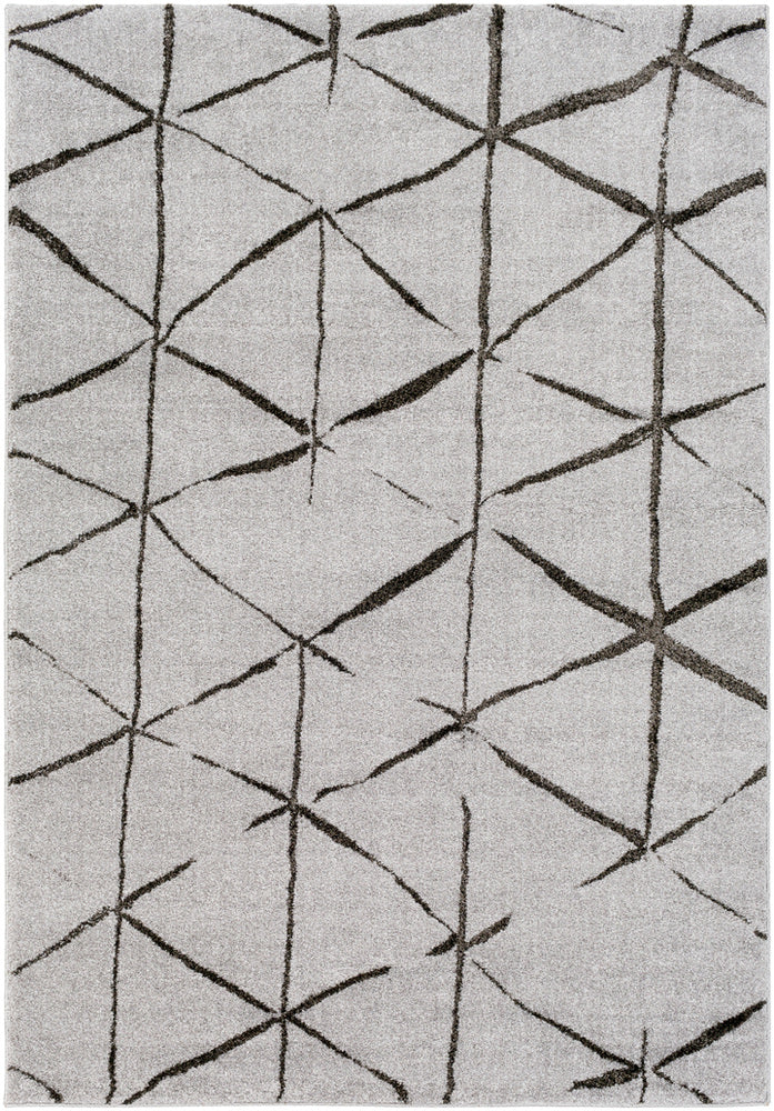 Surya Baylee BYL1007 Medium Gray/Black Area Rug