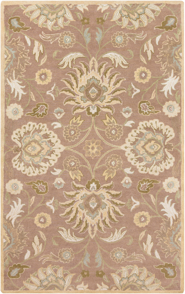 Surya Caesar CAE1108 Neutral/Brown Classic Area Rug