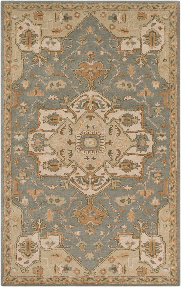 Surya Caesar CAE1144 Grey/Neutral Traditional Area Rug