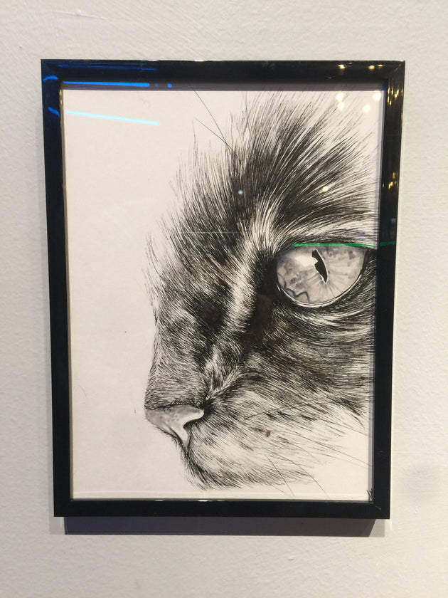"""Cat Eye"" by Alex Hundemer  $50"