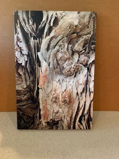 """How Many Faces?"" by Anne Griffin $275"