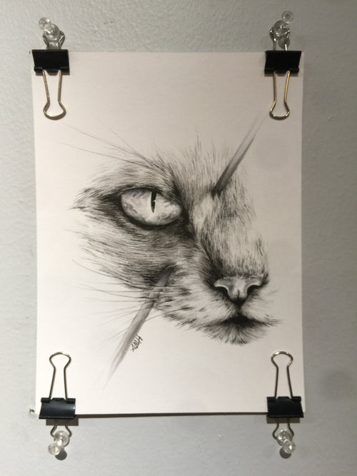 """Hunted: Cat's Eye"" by Alex Hundemer  $40"