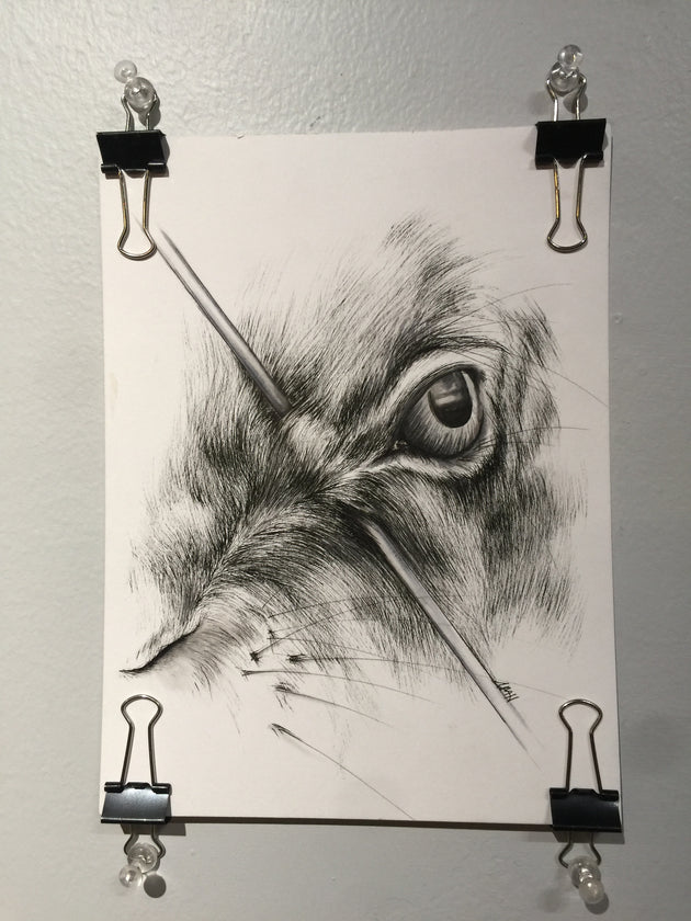 """Hunted: Hare's Eye"" by Alex Hundemer  $40"