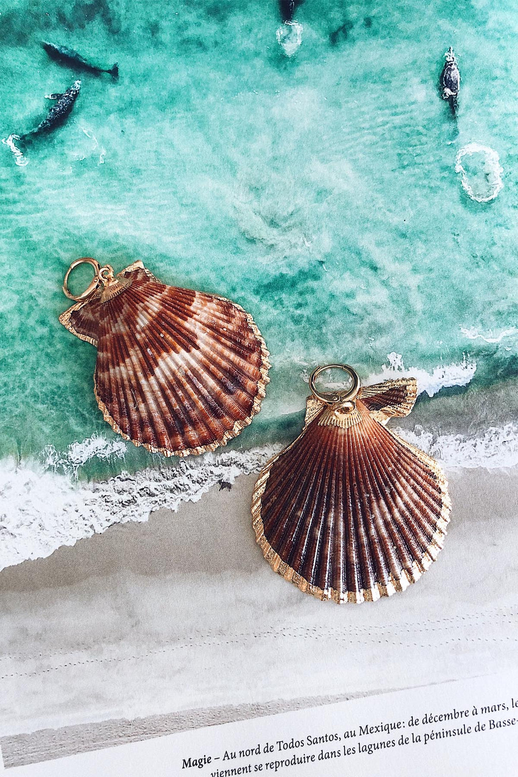 Scallop Shell Earrings, Natural